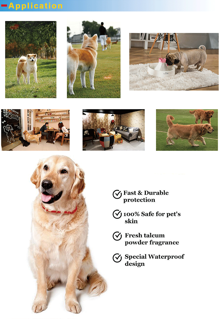 Popular Long effective safe and natural ingredients flea and tick free pet collar-5